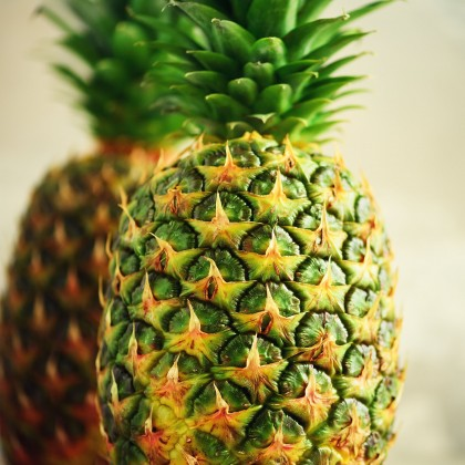 Fresh MD2 Pineapple (0.9kg - 1.1kg)