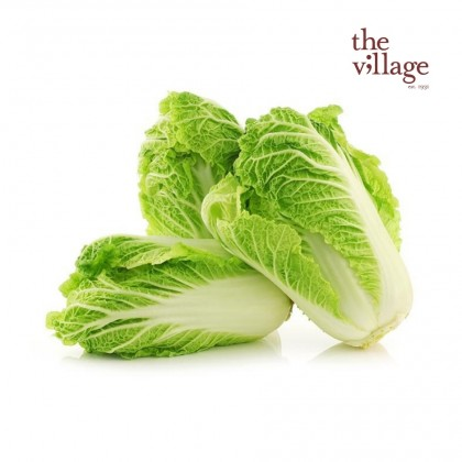 Long Cabbage [500g~600g/PACK]