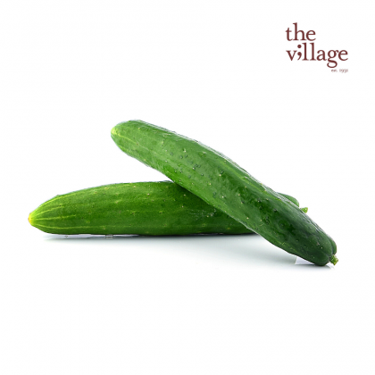 Japanese Cucumber [~350g~/PACK]